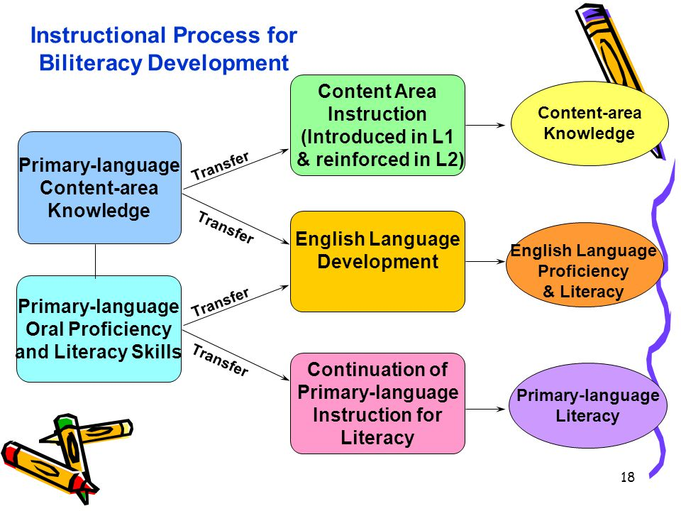 Primary-language Content-area Knowledge Content Area Instruction (Introduced in L1 & reinforced in L2) English Language Development Continuation of Primary-language Instruction for Literacy Transfer Primary-language Oral Proficiency and Literacy Skills Content-area Knowledge English Language Proficiency & Literacy Primary-language Literacy Instructional Process for Biliteracy Development 18