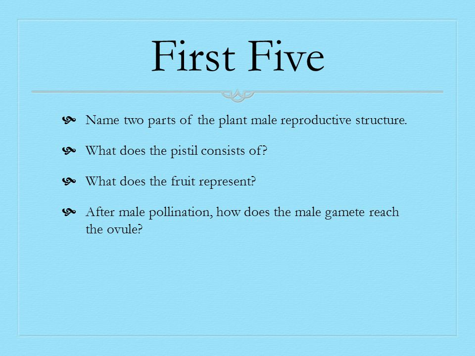 First Five  Name two parts of the plant male reproductive structure.