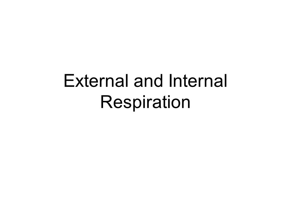External and Internal Respiration