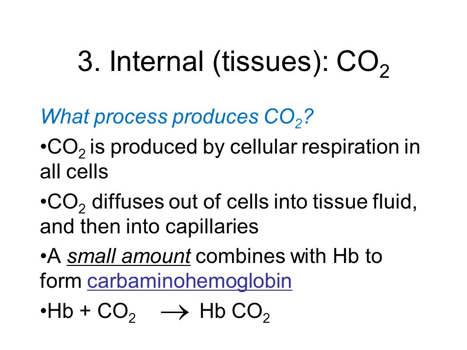 3. Internal (tissues): CO 2 What process produces CO 2 .