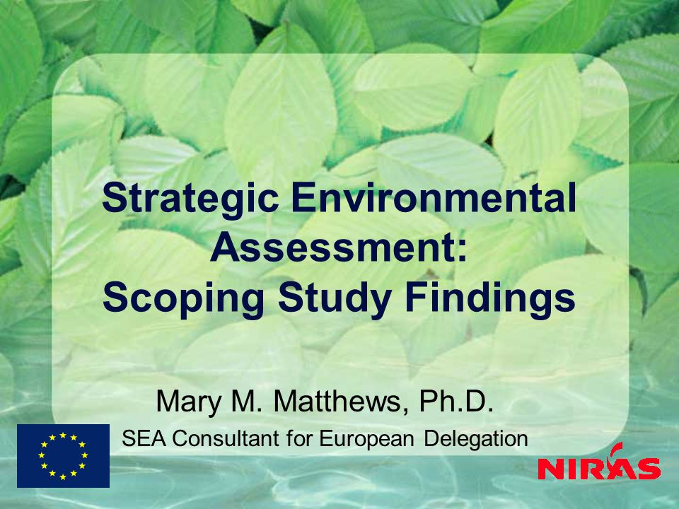 Strategic Environmental Assessment: Scoping Study Findings Mary M.