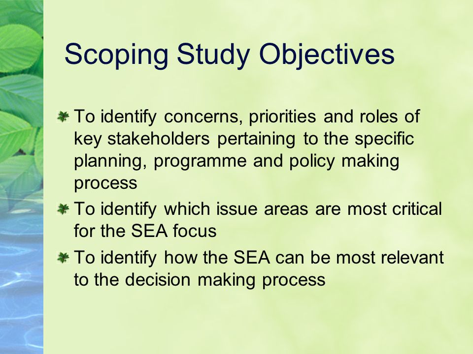 Scoping Study Objectives To identify concerns, priorities and roles of key stakeholders pertaining to the specific planning, programme and policy making process To identify which issue areas are most critical for the SEA focus To identify how the SEA can be most relevant to the decision making process