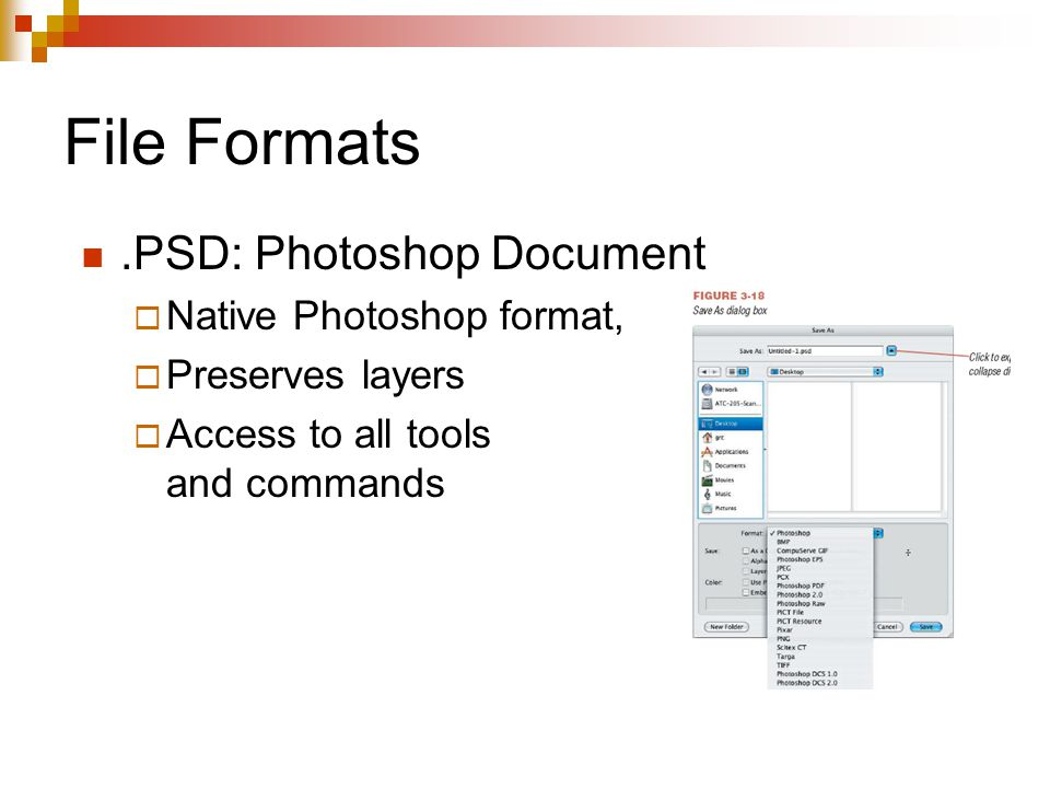 File Formats.PSD: Photoshop Document  Native Photoshop format,  Preserves layers  Access to all tools and commands