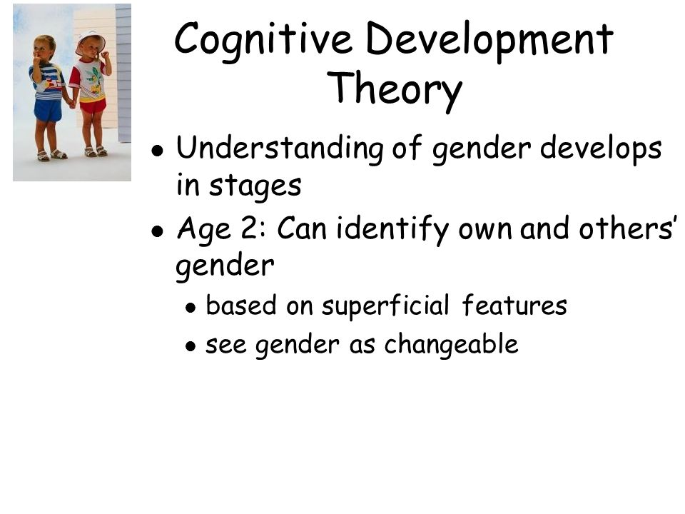Cognitive Development Theory l Understanding of gender develops in stages l Age 2: Can identify own and others' gender l based on superficial features l see gender as changeable