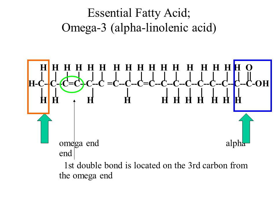 Essential Fatty Acid; Omega-3 (alpha-linolenic acid) omega endalpha end 1st double bond is located on the 3rd carbon from the omega end H H H H H H H H H H H H H H H H H O H-C--C--C=C--C--C =C--C--C=C--C--C--C--C--C--C--C--C-OH H H H H H H H H H H H