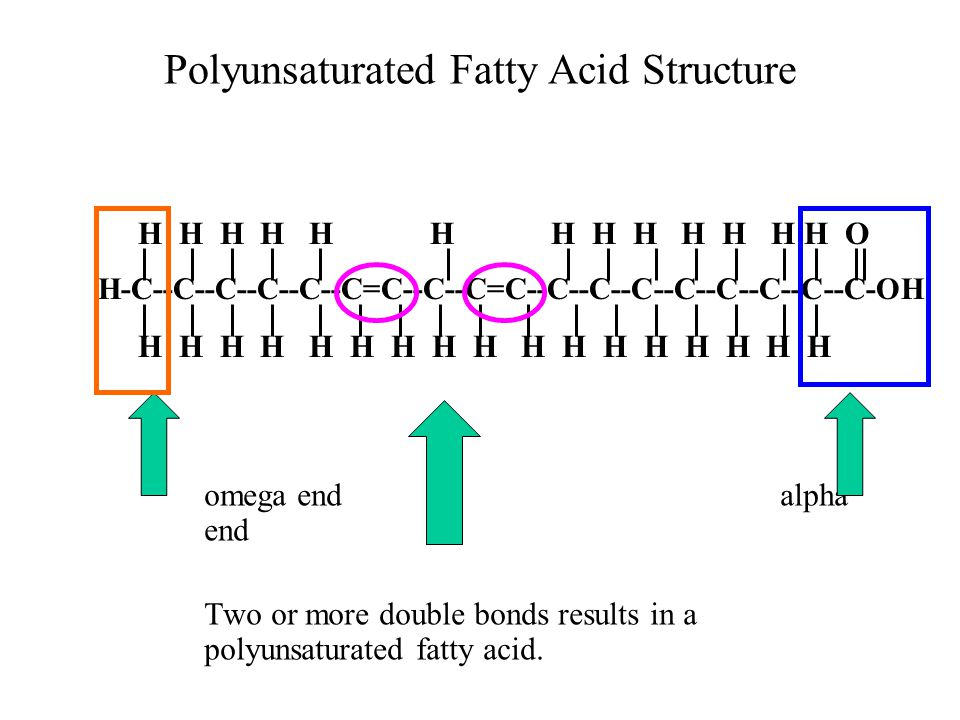 Polyunsaturated Fatty Acid Structure omega endalpha end Two or more double bonds results in a polyunsaturated fatty acid.