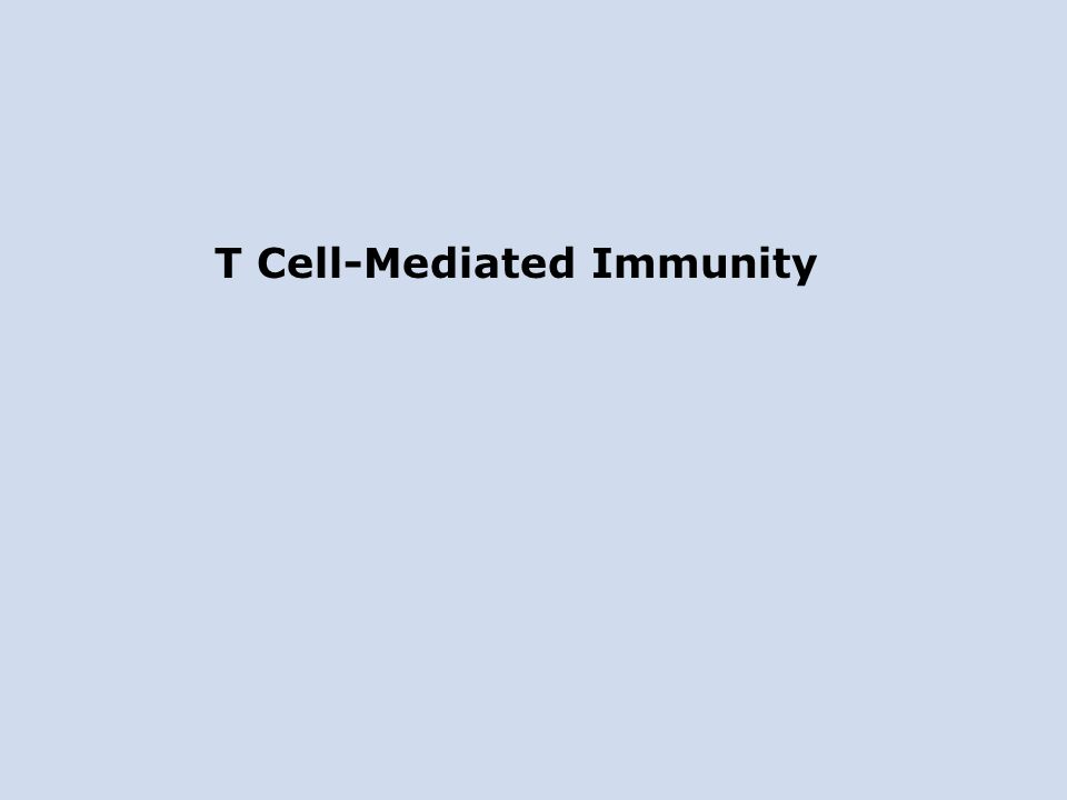 T Cell-Mediated Immunity