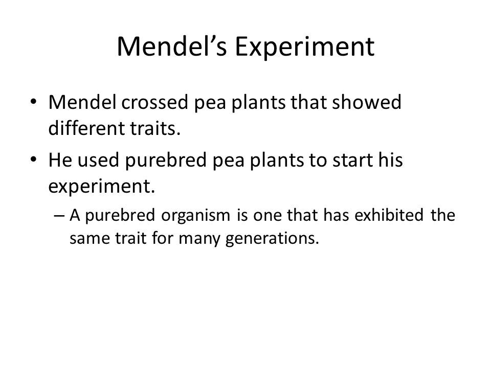 Mendel's Experiment Mendel crossed pea plants that showed different traits.