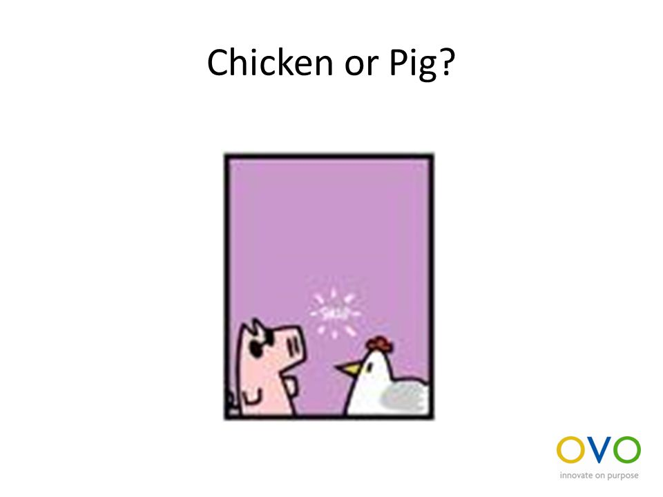 Chicken or Pig