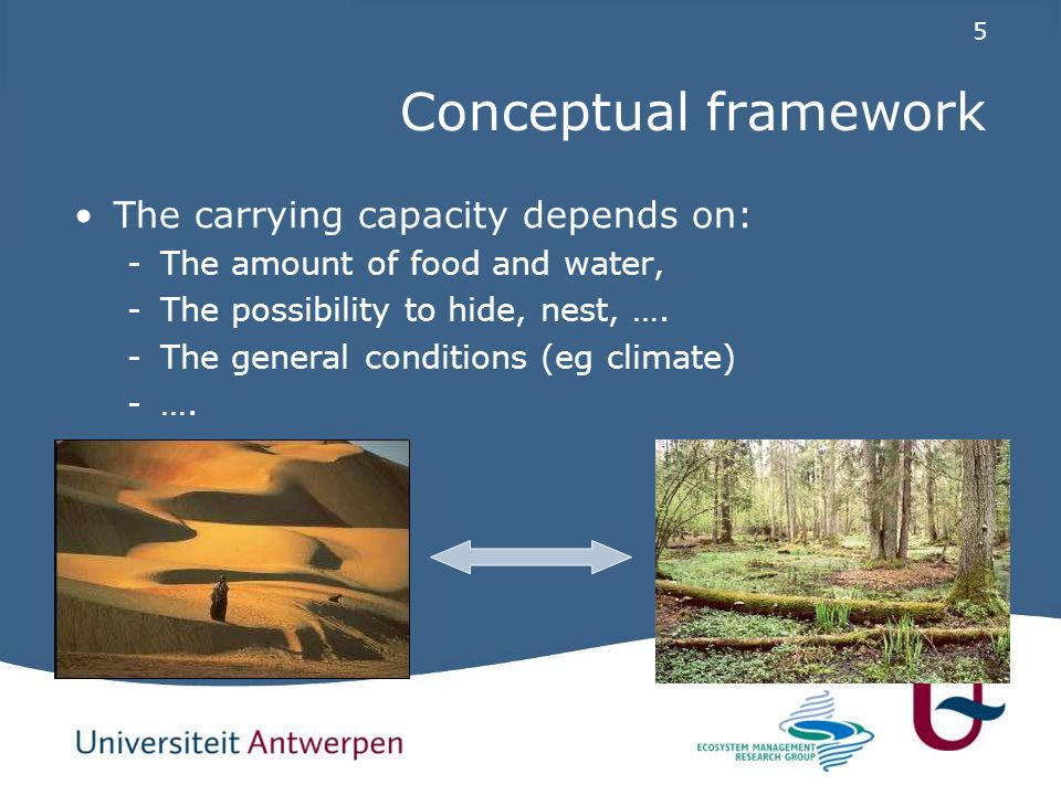 5 Conceptual framework The carrying capacity depends on: -The amount of food and water, -The possibility to hide, nest, ….