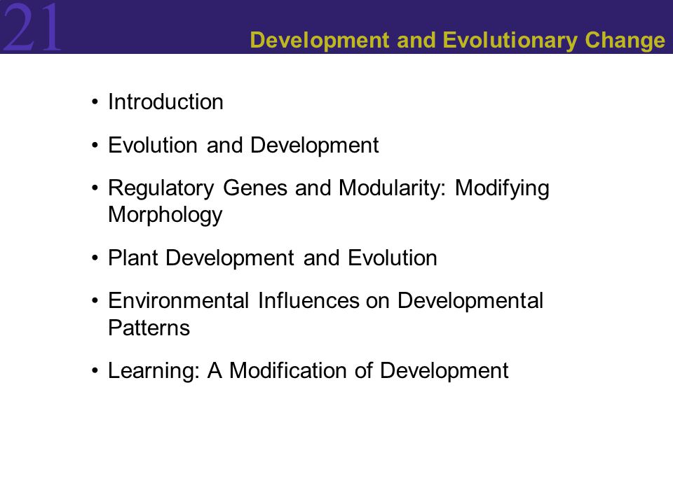 21 Introduction Evolution and Development Regulatory Genes and Modularity: Modifying Morphology Plant Development and Evolution Environmental Influences on Developmental Patterns Learning: A Modification of Development
