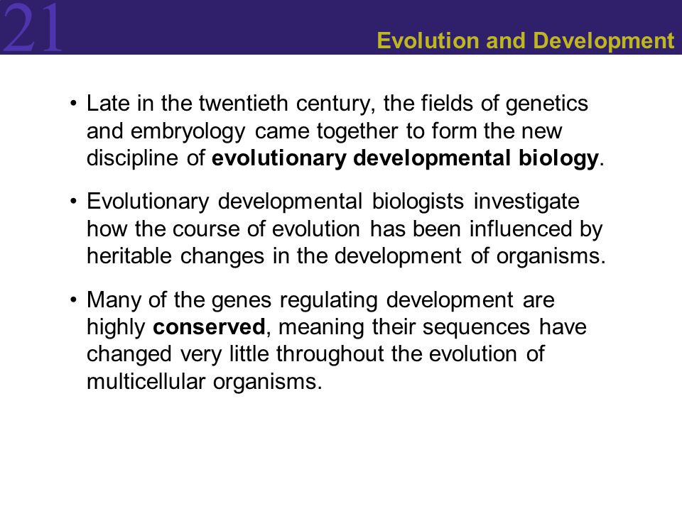 21 Evolution and Development Late in the twentieth century, the fields of genetics and embryology came together to form the new discipline of evolutionary developmental biology.