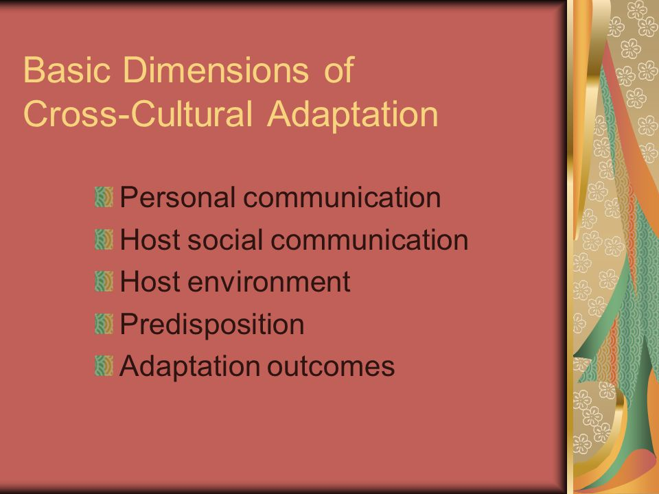 Basic Dimensions of Cross-Cultural Adaptation Personal communication Host social communication Host environment Predisposition Adaptation outcomes