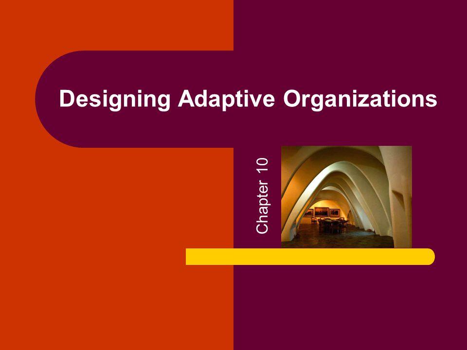 Designing Adaptive Organizations Chapter 10