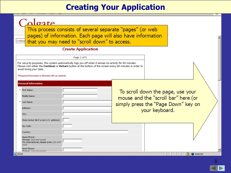 9 This process consists of several separate pages (or web pages) of information.