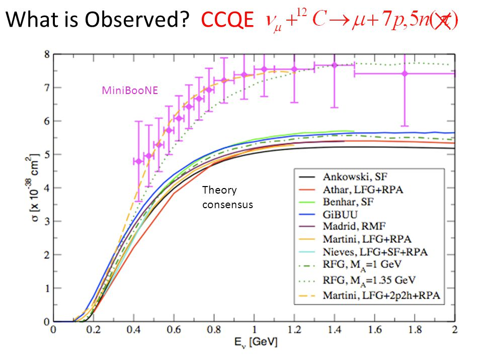 MiniBooNE Theory consensus What is Observed CCQE