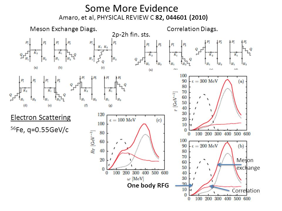 Some More Evidence Amaro, et al, PHYSICAL REVIEW C 82, (2010) Meson Exchange Diags.Correlation Diags.