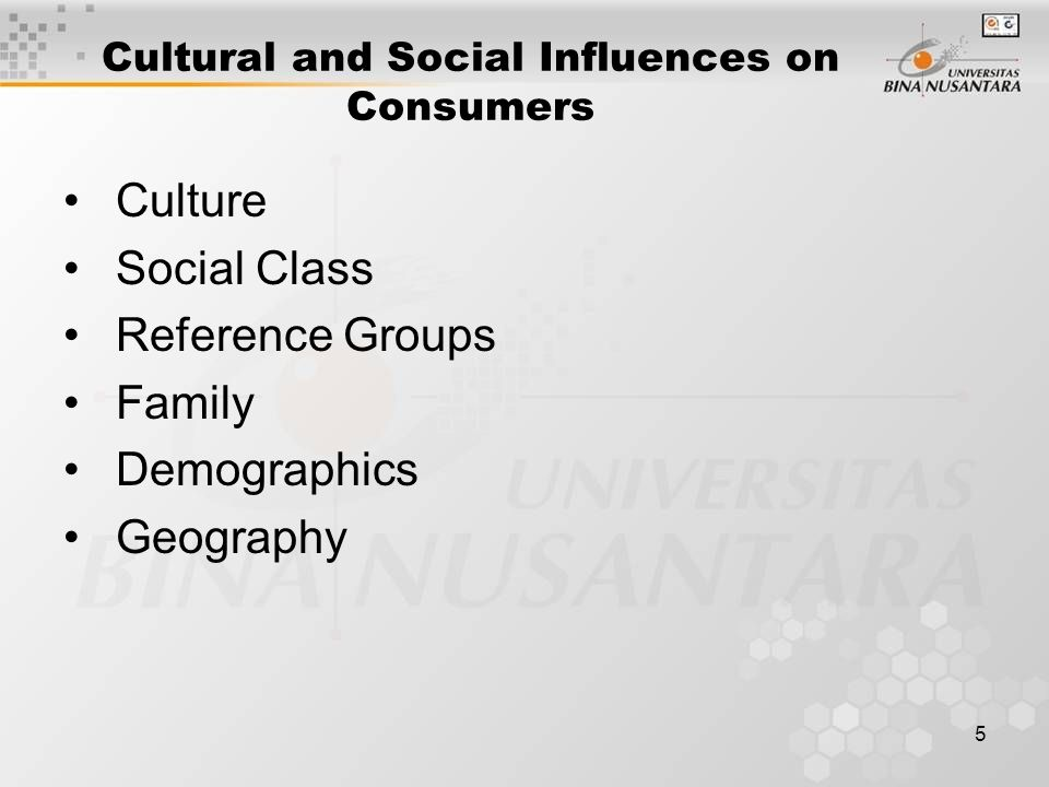5 Cultural and Social Influences on Consumers Culture Social Class Reference Groups Family Demographics Geography