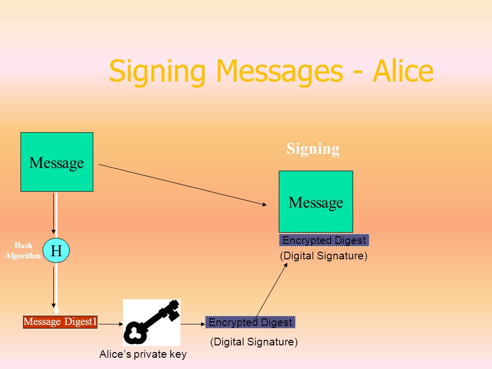 Signing Messages - Alice Message Message Digest1 H Hash Algorithm Encrypted Digest (Digital Signature) Message Signing Encrypted Digest (Digital Signature) Alice's private key