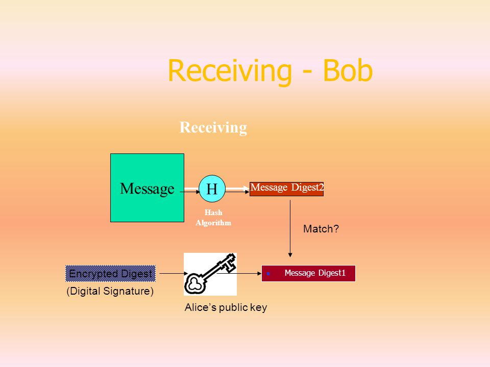 Receiving - Bob Message H Message Digest2 Receiving Hash Algorithm Encrypted Digest (Digital Signature) Message Digest1 Alice's public key Match