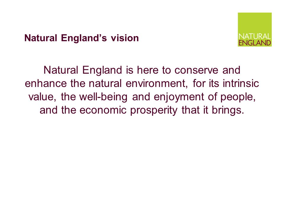 Natural England's vision Natural England is here to conserve and enhance the natural environment, for its intrinsic value, the well-being and enjoyment of people, and the economic prosperity that it brings.