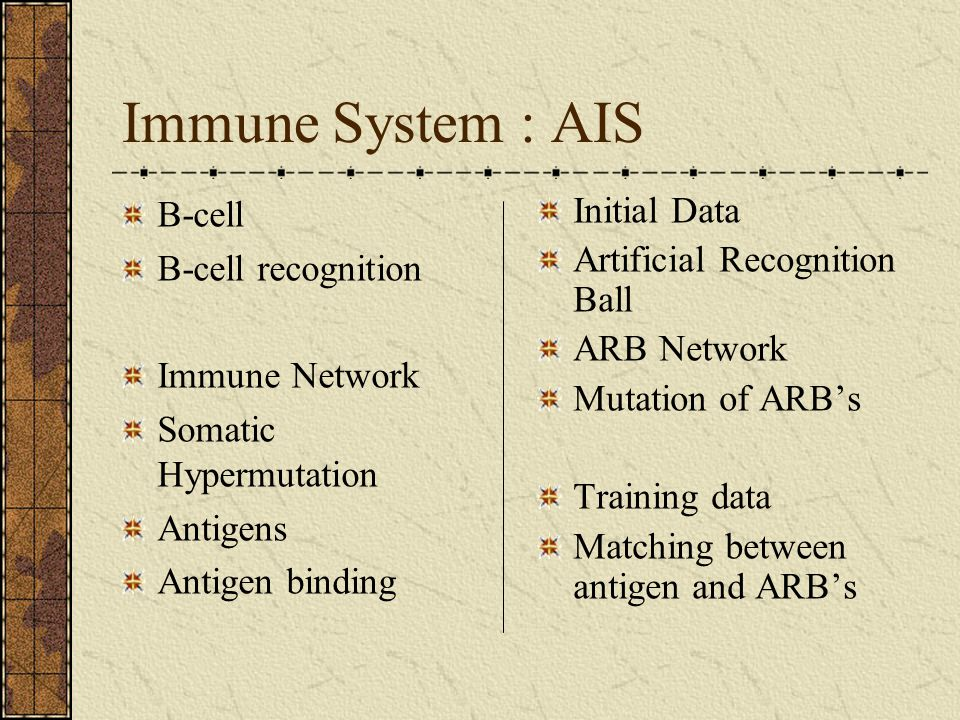 Immune System : AIS B-cell B-cell recognition Immune Network Somatic Hypermutation Antigens Antigen binding Initial Data Artificial Recognition Ball ARB Network Mutation of ARB's Training data Matching between antigen and ARB's