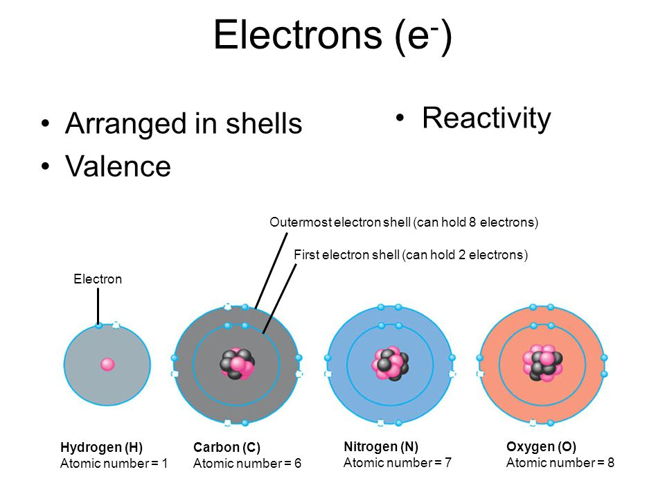 Electrons (e - ) Arranged in shells Valence Hydrogen (H) Atomic number = 1 Electron Carbon (C) Atomic number = 6 Nitrogen (N) Atomic number = 7 Oxygen (O) Atomic number = 8 Outermost electron shell (can hold 8 electrons) First electron shell (can hold 2 electrons) Reactivity