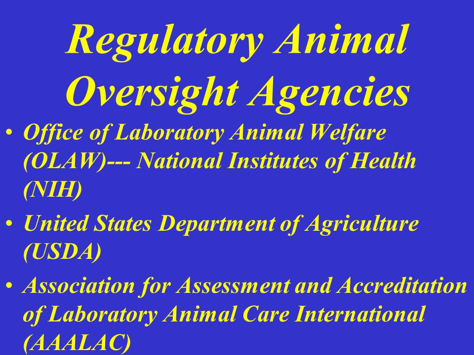 Regulatory Animal Oversight Agencies Office of Laboratory Animal Welfare (OLAW)--- National Institutes of Health (NIH) United States Department of Agriculture (USDA) Association for Assessment and Accreditation of Laboratory Animal Care International (AAALAC)