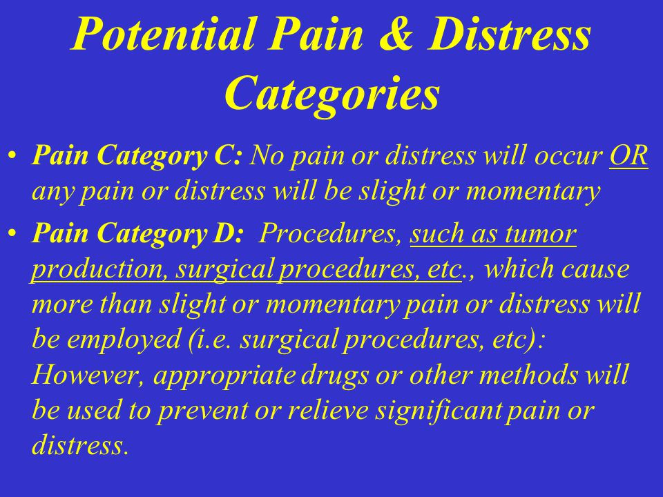 Potential Pain & Distress Categories Pain Category C: No pain or distress will occur OR any pain or distress will be slight or momentary Pain Category D: Procedures, such as tumor production, surgical procedures, etc., which cause more than slight or momentary pain or distress will be employed (i.e.