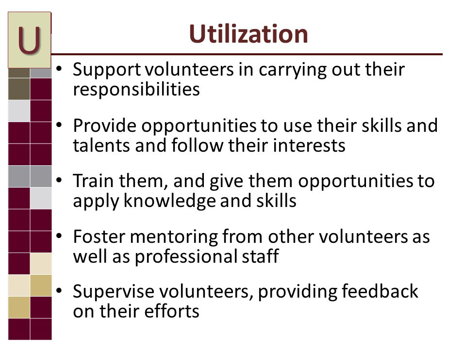 Utilization Support volunteers in carrying out their responsibilities Provide opportunities to use their skills and talents and follow their interests Train them, and give them opportunities to apply knowledge and skills Foster mentoring from other volunteers as well as professional staff Supervise volunteers, providing feedback on their efforts U