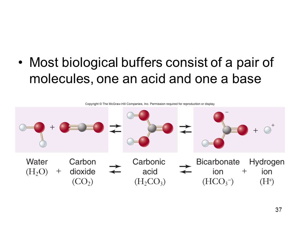 37 Most biological buffers consist of a pair of molecules, one an acid and one a base