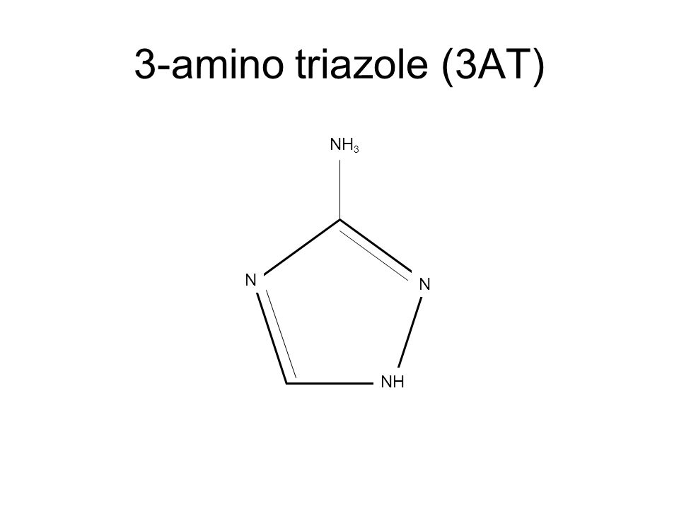 3-amino triazole (3AT) NH N N NH 3