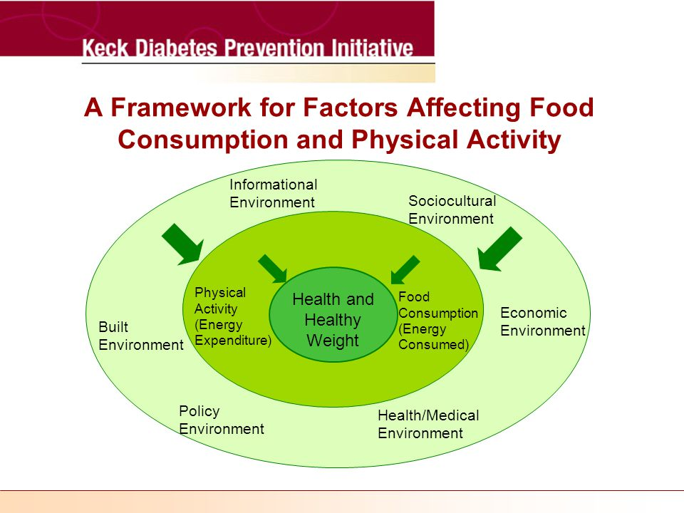 A Framework for Factors Affecting Food Consumption and Physical Activity Health and Healthy Weight Physical Activity (Energy Expenditure) Food Consumption (Energy Consumed) Informational Environment Policy Environment Economic Environment Sociocultural Environment Health/Medical Environment Built Environment
