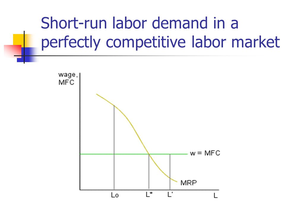 Short-run labor demand in a perfectly competitive labor market