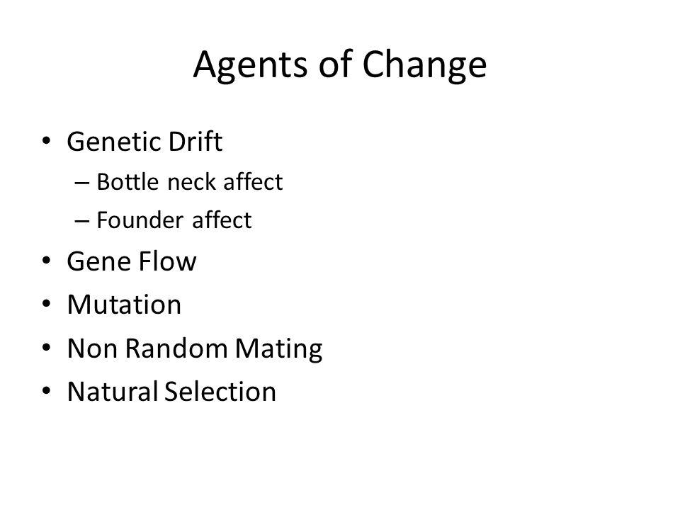 Agents of Change Genetic Drift – Bottle neck affect – Founder affect Gene Flow Mutation Non Random Mating Natural Selection