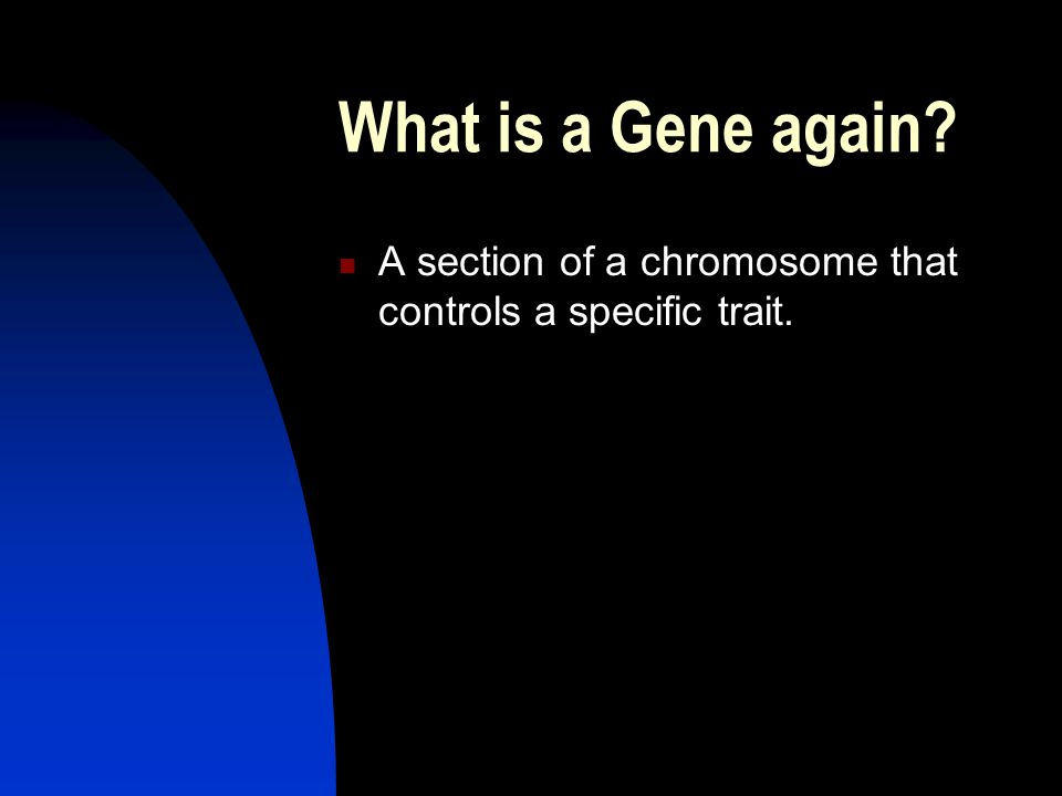 What is a Gene again A section of a chromosome that controls a specific trait.