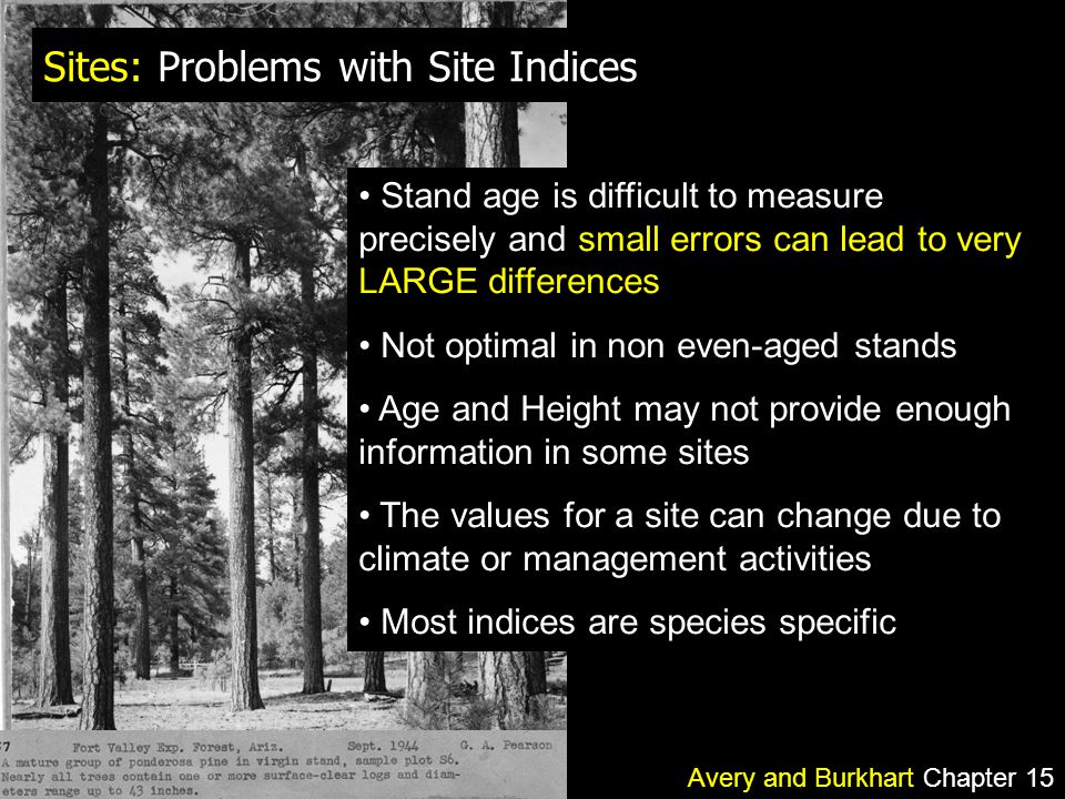 Sites: Problems with Site Indices Avery and Burkhart Chapter 15 Stand age is difficult to measure precisely and small errors can lead to very LARGE differences Not optimal in non even-aged stands Age and Height may not provide enough information in some sites The values for a site can change due to climate or management activities Most indices are species specific