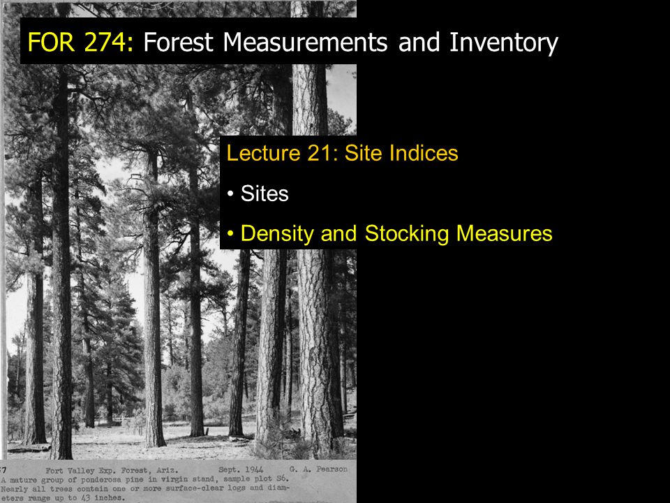 FOR 274: Forest Measurements and Inventory Lecture 21: Site Indices Sites Density and Stocking Measures