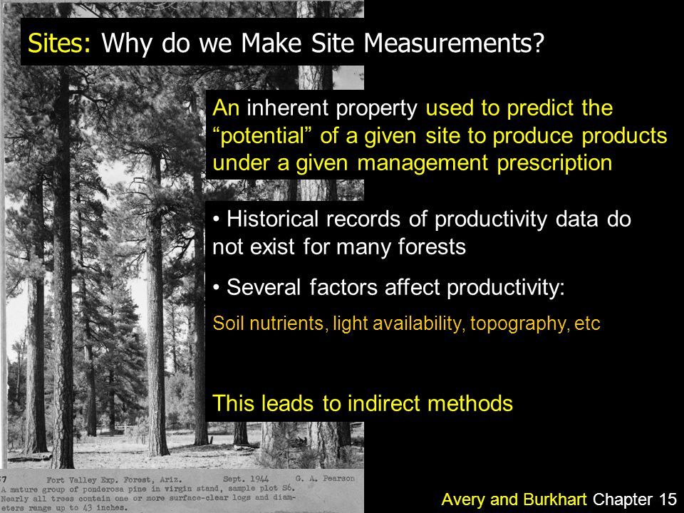 Sites: Why do we Make Site Measurements.