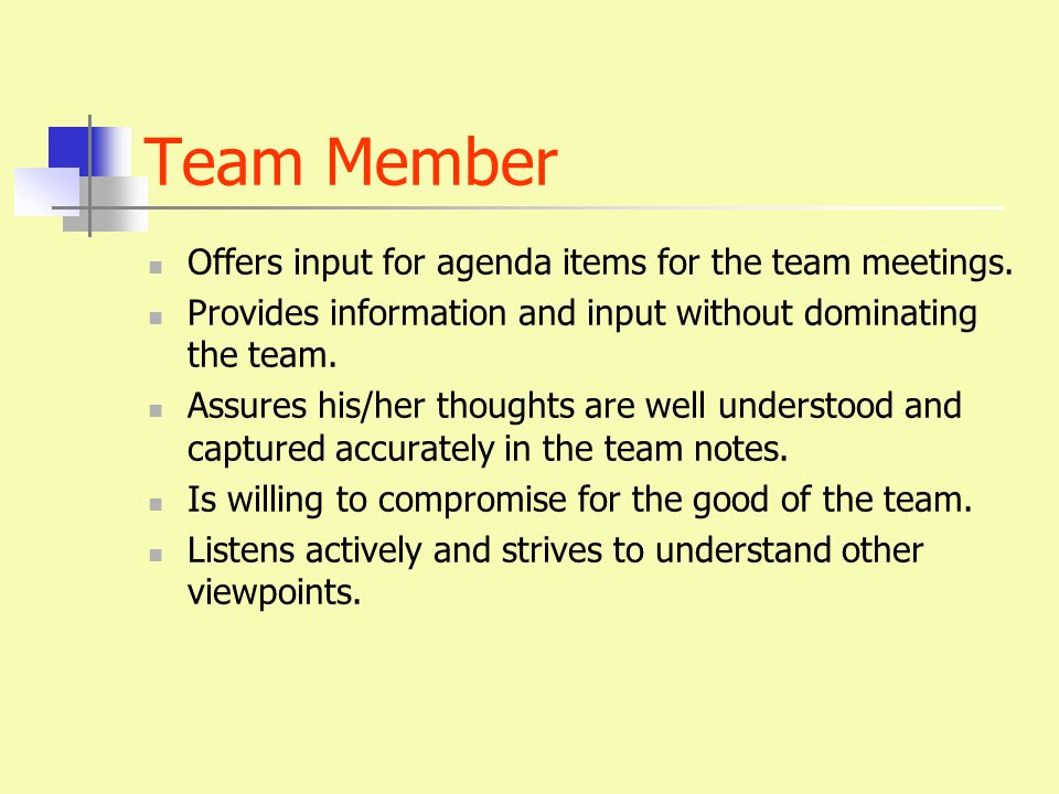 Team Member Offers input for agenda items for the team meetings.