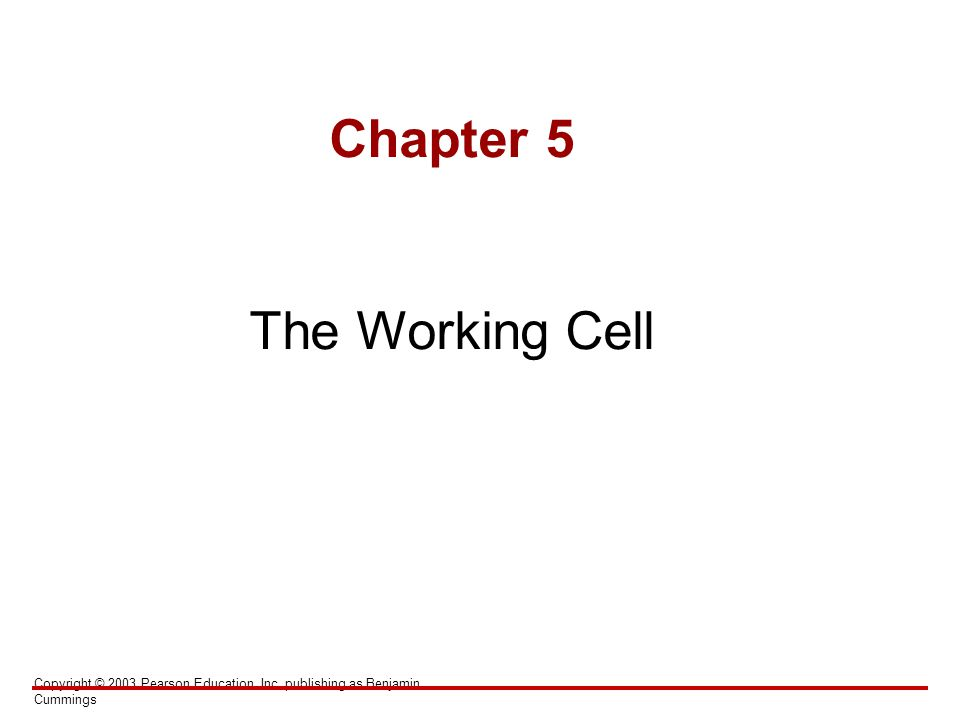 Copyright © 2003 Pearson Education, Inc. publishing as Benjamin Cummings Chapter 5 The Working Cell