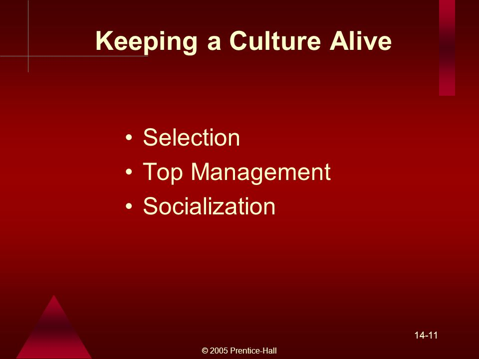 © 2005 Prentice-Hall Keeping a Culture Alive Selection Top Management Socialization