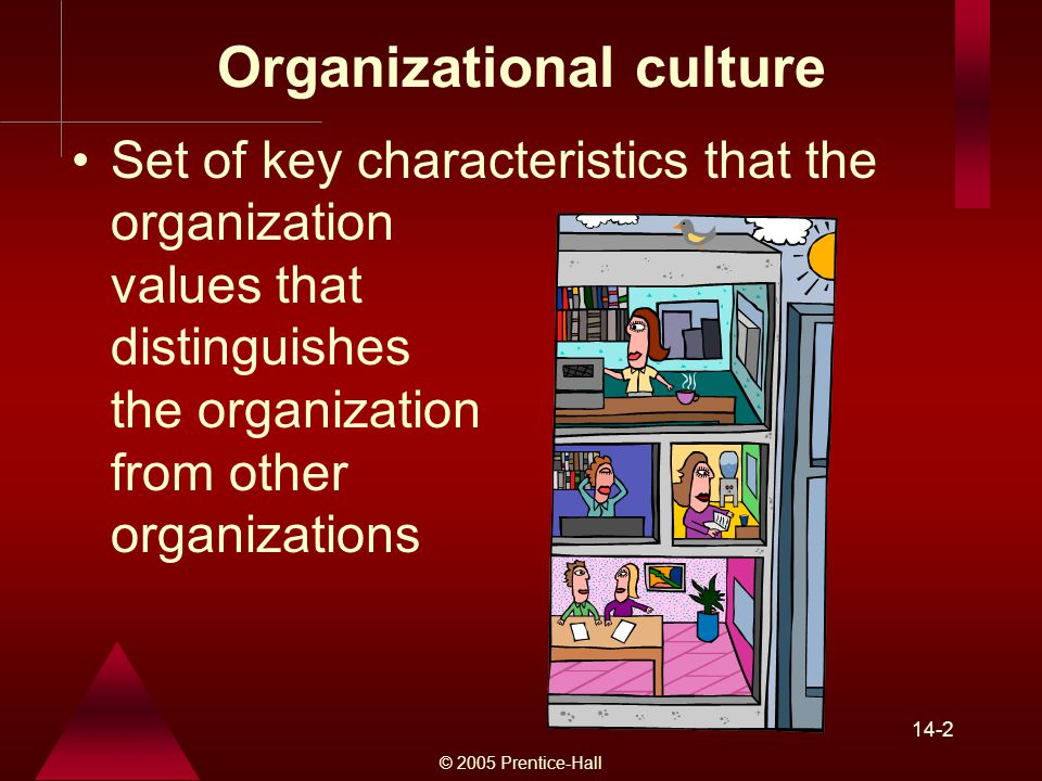 © 2005 Prentice-Hall 14-2 Organizational culture Set of key characteristics that the organization values that distinguishes the organization from other organizations