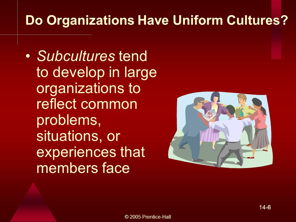 © 2005 Prentice-Hall 14-6 Subcultures tend to develop in large organizations to reflect common problems, situations, or experiences that members face Do Organizations Have Uniform Cultures