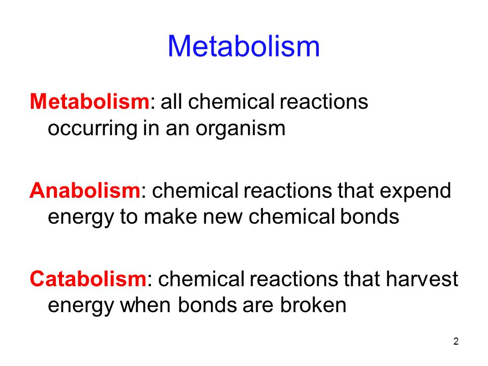 2 Metabolism Metabolism: all chemical reactions occurring in an organism Anabolism: chemical reactions that expend energy to make new chemical bonds Catabolism: chemical reactions that harvest energy when bonds are broken