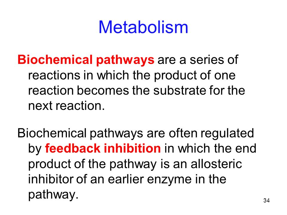 34 Metabolism Biochemical pathways are a series of reactions in which the product of one reaction becomes the substrate for the next reaction.