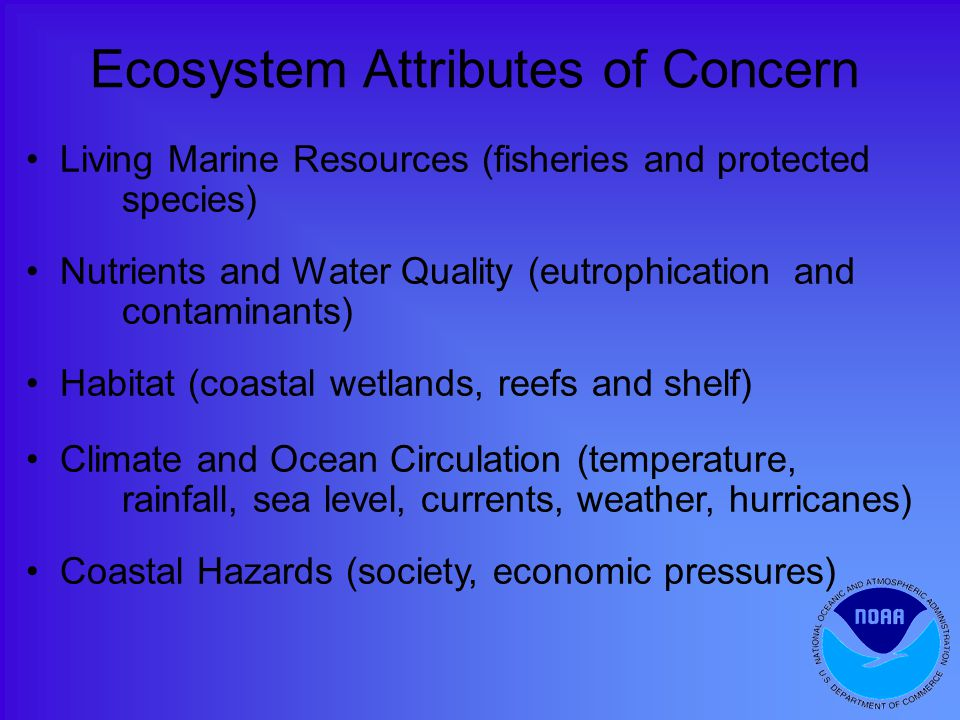 Ecosystem Attributes of Concern Living Marine Resources (fisheries and protected species) Nutrients and Water Quality (eutrophication and contaminants) Habitat (coastal wetlands, reefs and shelf) Climate and Ocean Circulation (temperature, rainfall, sea level, currents, weather, hurricanes) Coastal Hazards (society, economic pressures)