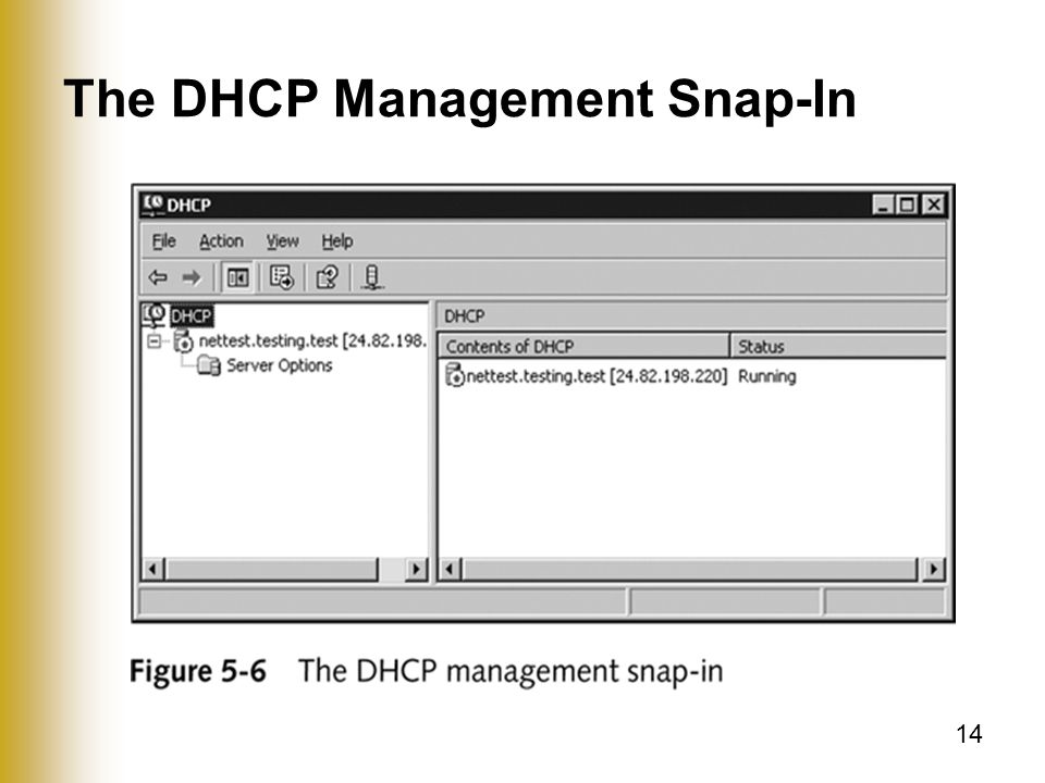 14 The DHCP Management Snap-In