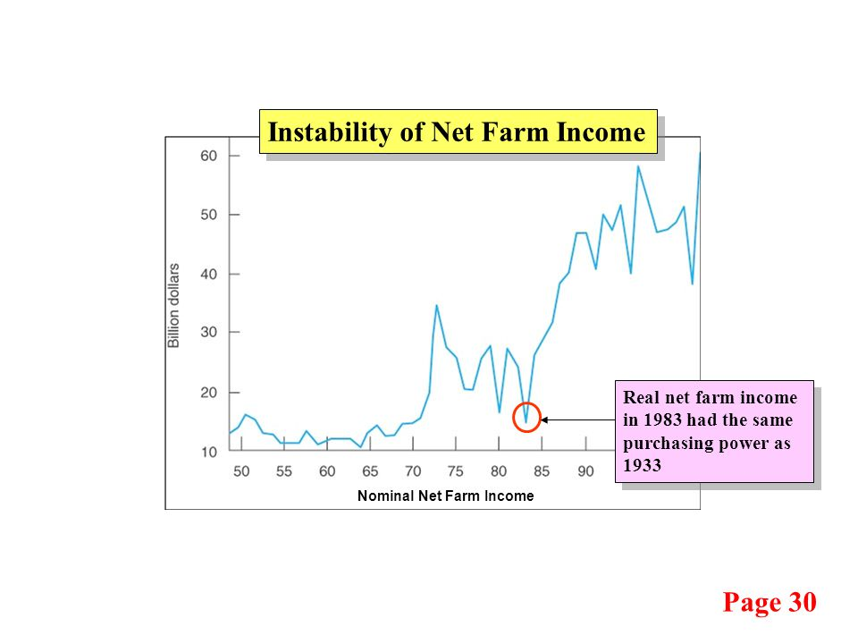 Page 30 Nominal Net Farm Income Instability of Net Farm Income Real net farm income in 1983 had the same purchasing power as 1933