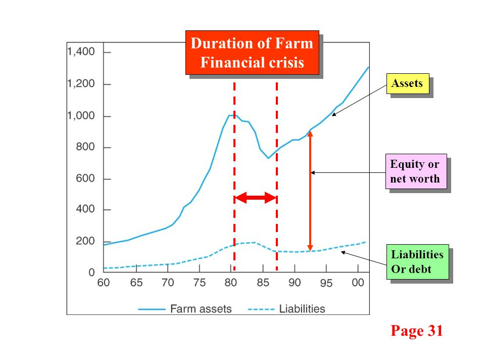 Page 31 Liabilities Or debt Liabilities Or debt Assets Equity or net worth Duration of Farm Financial crisis Duration of Farm Financial crisis